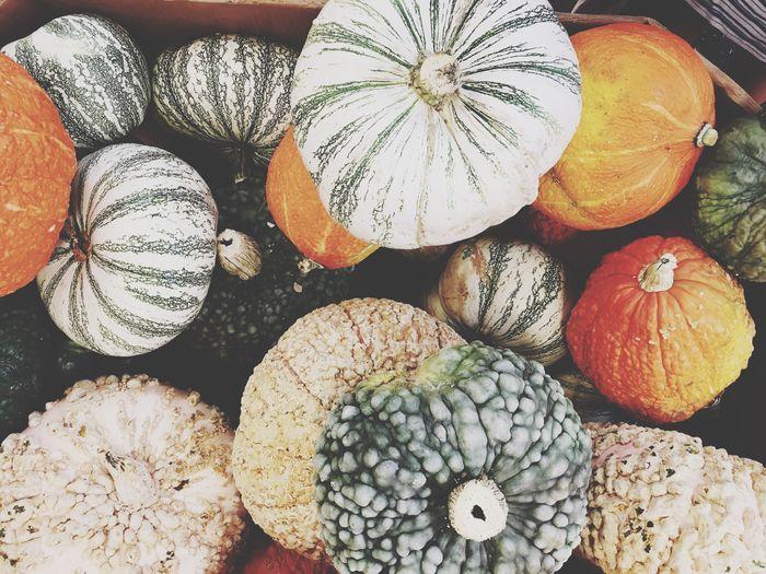 Close-up of pumpkins