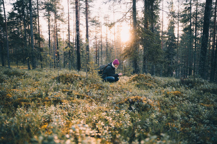 Man and plants on land in forest