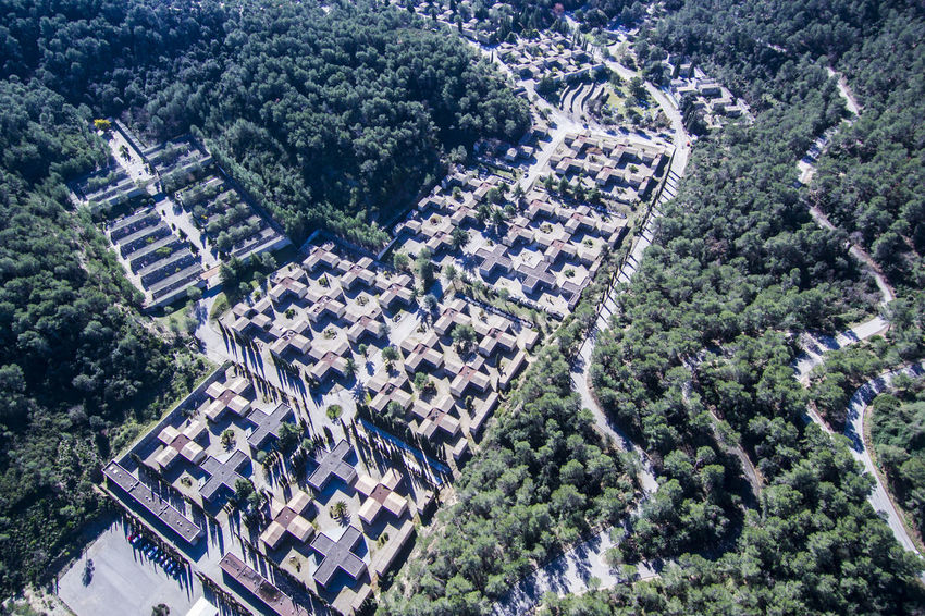 Cemetery. Aerial view. Cemetery Collserola Crosses Drone  Memorial View Aerial Architecture Cementiri Flight Forest Funeral Graves Historic Old Outdoors Peaceful Religion Symbol Traditional Tree