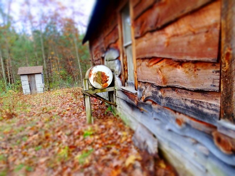 Fall_collection EyeEm Nature Lover Eyeem Michigan Fall Colors Fall Beauty Cabin In The Woods Log Cabin