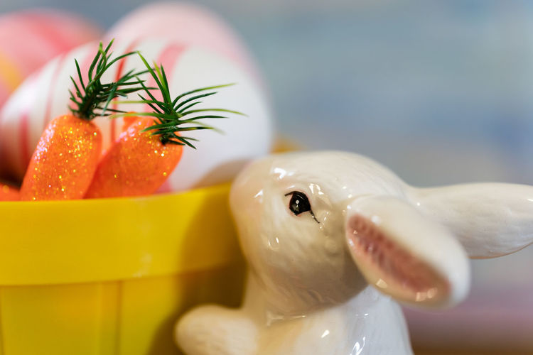 Close-up Freshness Healthy Eating Still Life Easter Bunny  Rabbit Carrots Display Celebration
