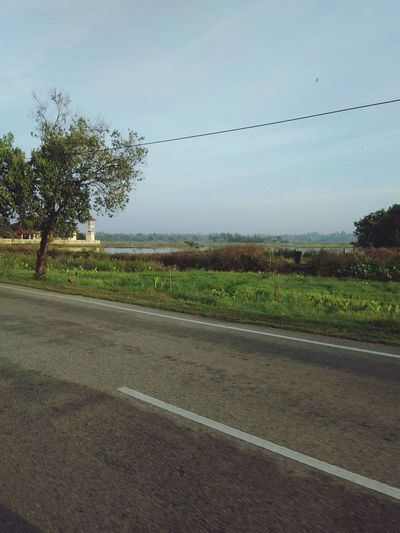 The Road across 🏢 near lake, pond and paddy field on sunrise~~ White Line Road Solorider Rider Hopeless Hopelessness Scenery Lonely Breeze Tumpat Kelantan Lake Pond Paddy Field Bird Tree Rural Scene Agriculture Road Field Sky Animal Themes Seagull Farmland Empty Road