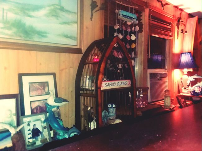 Bar home showplace display fun indoors lighting beach shells sea creatures.... Alcohol Store Wine Cellar