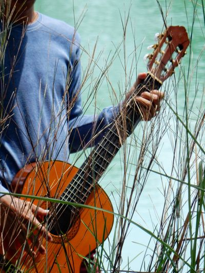 Midsection of man holding guitar by plants