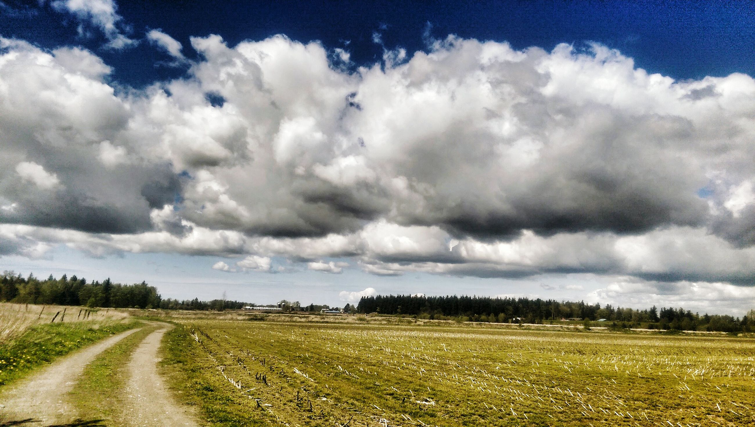sky, cloud - sky, landscape, field, cloudy, grass, road, tranquil scene, cloud, transportation, tranquility, rural scene, nature, scenics, the way forward, beauty in nature, agriculture, country road, grassy, dirt road