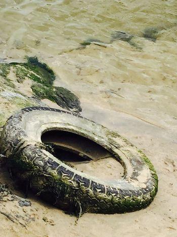 Water Crantock Beach Cornwall Sea Tyre