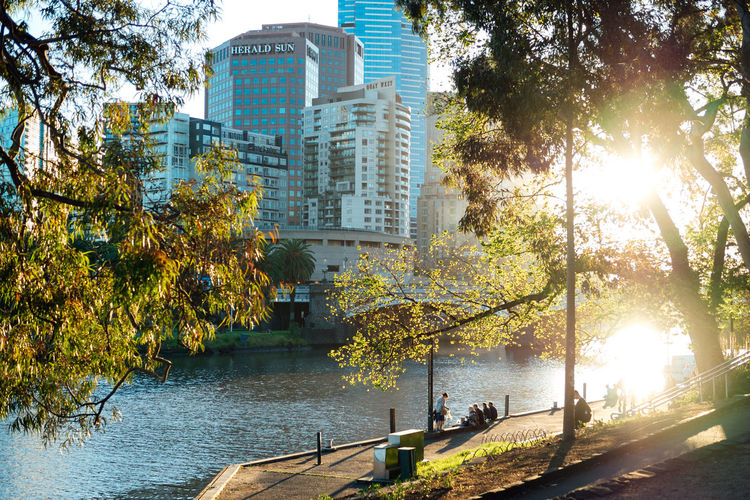 View of the Yarra, Birrarung Marr, Melbourne, Australia Architecture Australia Building Exterior City Citylife Day Melbourne Outdoors Sunlight Sunset Tree Trees Urban Lifestyle Water