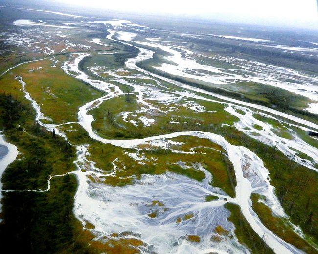 Alaska River Delta River Birds Eye View Taken From Airplane A Bird's Eye View Fresh On Eyeem