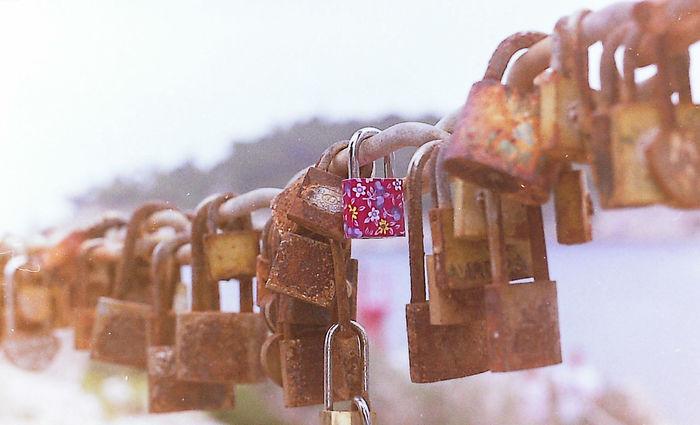 Analogue Photography Chain Flowery Lock Padlock Padlocks Rust Rusty