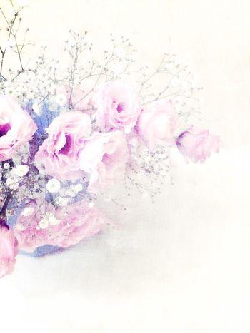 めっちゃ加工してみました IPhoneography Flowers Edit