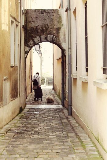 Friends till the end.... Old woman & her dog... EyEmNewHere Old Woman Dog Dog Love Full Length Rear View Architecture Built Structure Building Exterior Archway Passageway Historic Narrow vanishing point