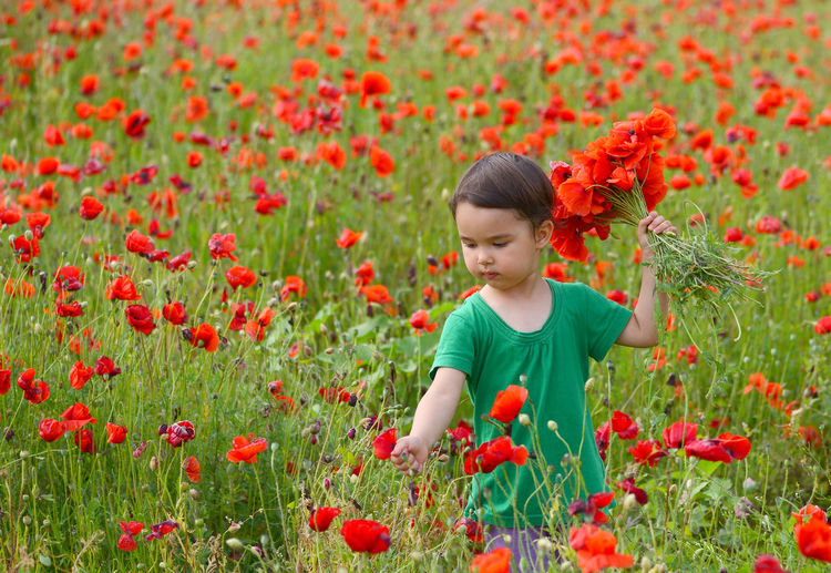 Low angle view of girl with red poppy flowers on field