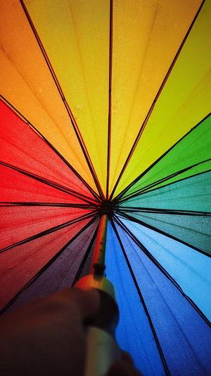 Growth Rainbow