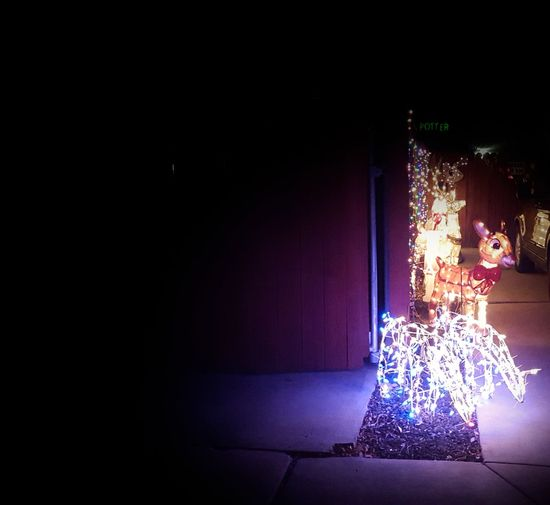 Christmas Decoration Christmas Xmas Tree ★*★ Xmas🎄 Christmas Decorations💙❤️ Christmas Lights Holiday Spirit❤ Tis The Season At Night🌙 Traditon Lights Night Time Photography Decorations 🎭 Festive Season Reindeer Seasonal Merry Christmas🎄🎅🏻 Christmas Eve ❤ Beautiful Winter City Scape Xmas Darkness And Light Dark Happy