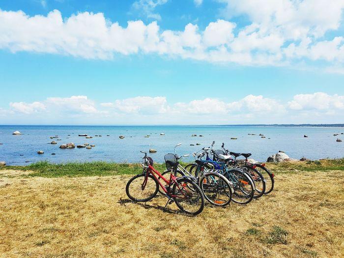 bikes at