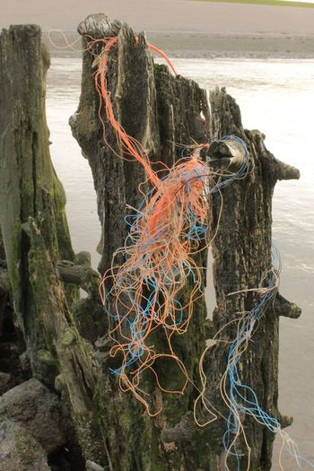 waddenzee bij Wierum Fishing Net No People Water Wadden Sea Waddenzee Check This Out Friesland Fryslan Nature Afval Op Strandpaal Enjoying Life Taking Photos