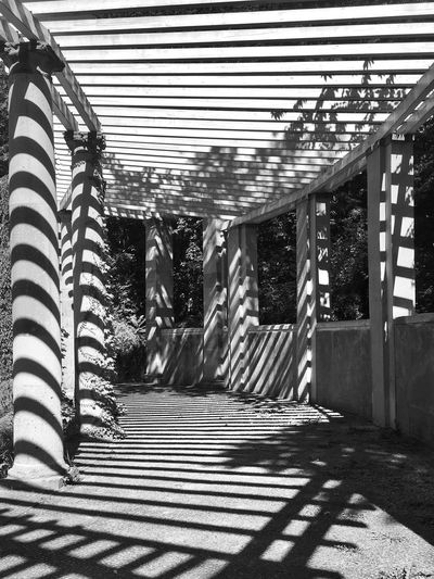 Built Structure Architecture Steps Day Outdoors No People The Way Forward Shadow Focus On Shadow Structures & Lines Blackandwhite Photography Blackandwhite Black And White Black & White Black And White Photography Shadows & Lights Light And Shadow Lines Geometry Geometric Shapes Sunlight Monochrome Photography