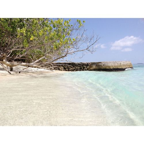 maledives 20I3 | 🌊 // Nature Beauty In Nature No People Water Maldives Beach First Eyeem Photo