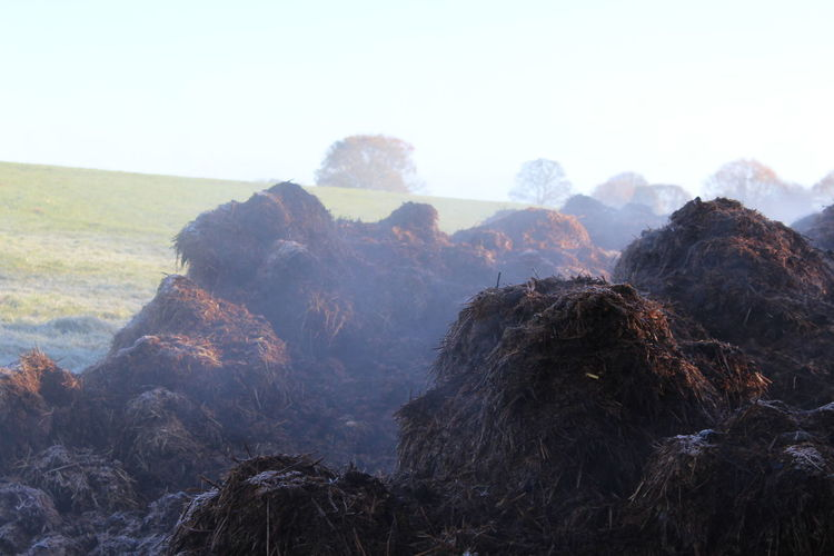Nature Day No People Outdoors Mountain Tree Sky Beauty In Nature Muck Heap Steaming Frosty Mornings