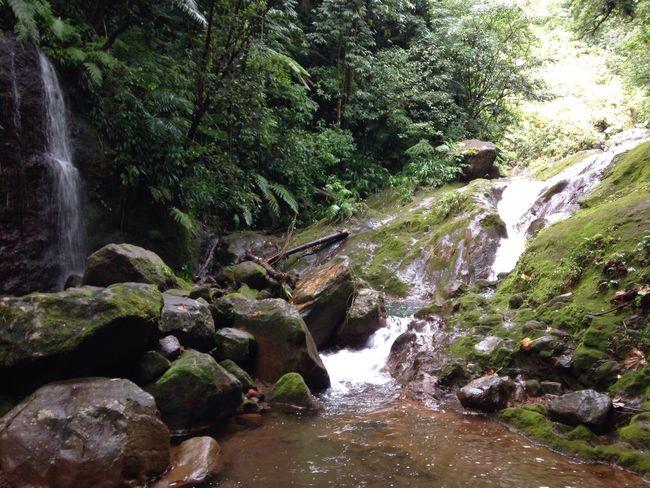 Falls Guadeloupe
