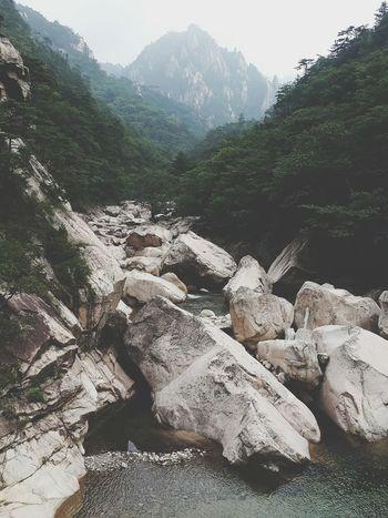 설악산 Seorak Mountain Vacation EyeEm Korea