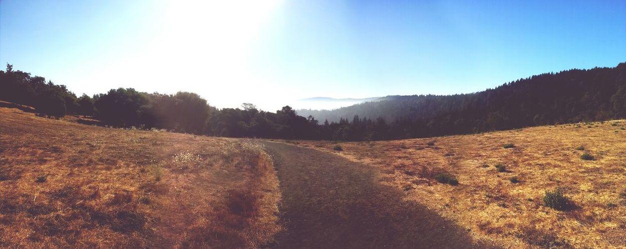 Hiking Trail Hiking❤ Landscape #Nature #photography California