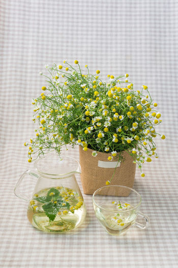 Close-up of drinks with flowers on table