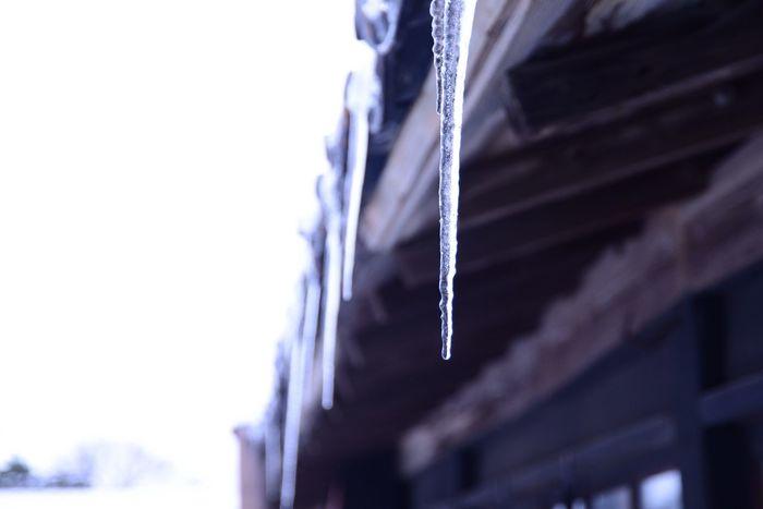 Winter Photo Photography Nature_collection Nature SAKATA YAMAGATA