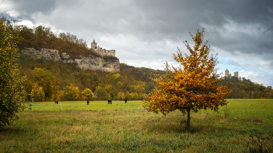 Trees on field and castle on hill against sky during autumn
