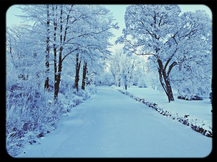 Soon it will be winther again..
