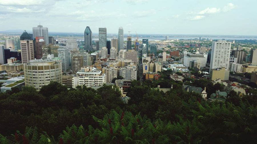 Montreal city view Travel Canada Montréal Cityscapes Photography Mont Royal Beautiful