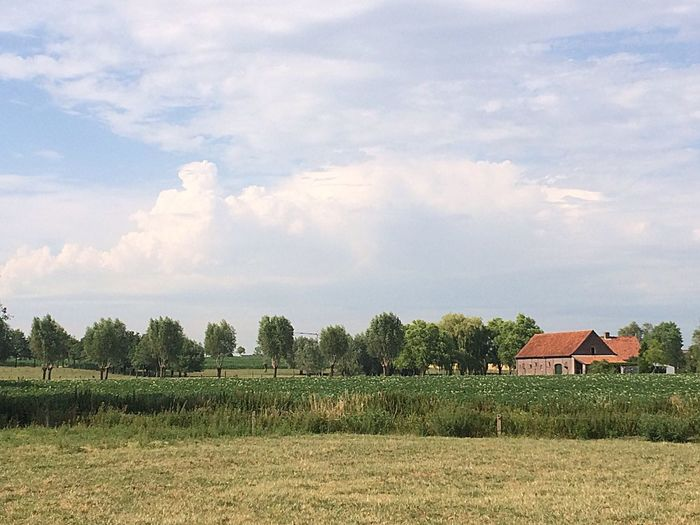 Landscape Clouds And Sky Farm Field Nature No People Outdoors Summertime Grass Flanders Trees And Sky Old Buildings Farmers Life Landscape_Collection Beauty In Nature Europe_gallery Out Of The City Simple Life Sunny Day ... Green Color Farmland Summer ☀ Summer 2017