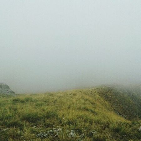 Fog Grass Landscape Nature Outdoors Green Color No People Tent Camping EyeEmNewHere Mountain Camping Hiking, Mountains, Adventure Traveler No People 😇😇😇