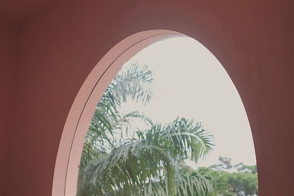 Arch Indoors  No People Tree Day Close-up Tumblrgirl Tumblr Girl Tumblr Pinteresting Pink VisualArt  Pinterest Green Vibes Vibes On A Summers Day Summer EyeEmNewHere EyeEmNewHere