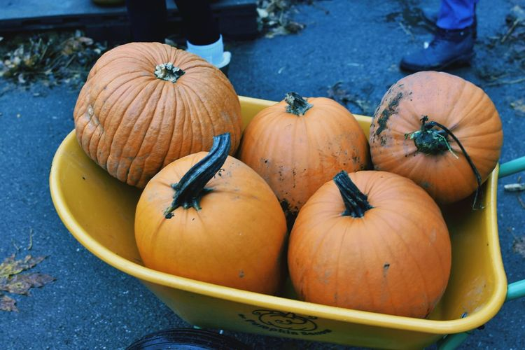 High Angle View Of Pumpkins In Cart