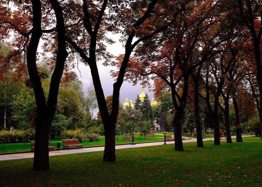 Kiev Ukraine Monastery Autumn Kiew Landscape Park Park - Man Made Space Plant Religious Architecture Tranquil Scene Tree