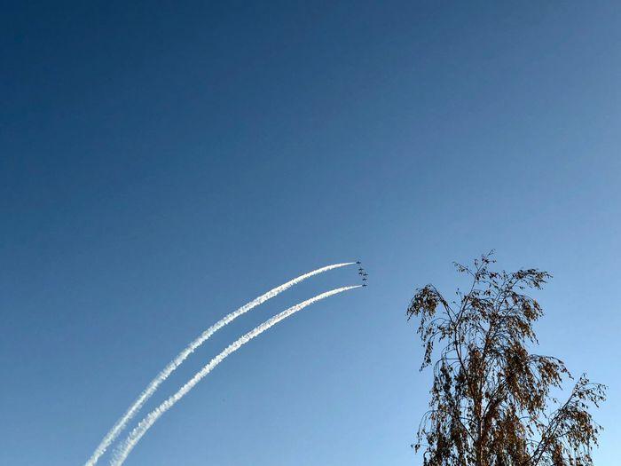Sky Blue Angels
