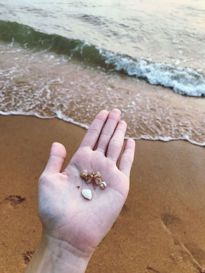 High angle view of hand on sand at beach