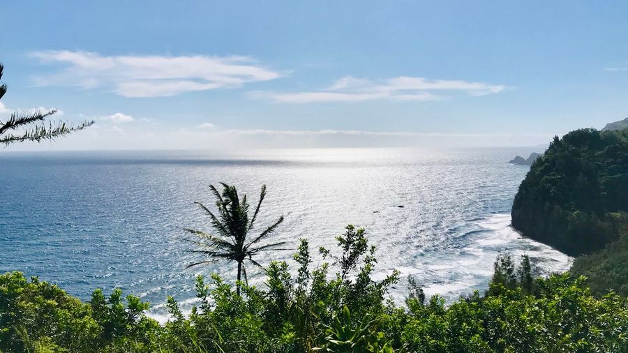 Pololu Trail views. Ocean Scenes Trail Hikingadventures Hawaii Big Island - Hawaii Islands Island Scene Pololu Valley Beach Pololu Valley Pololū EyeEm Selects Sky Water Beauty In Nature Plant Scenics - Nature Cloud - Sky Beach Idyllic Sea Tranquility