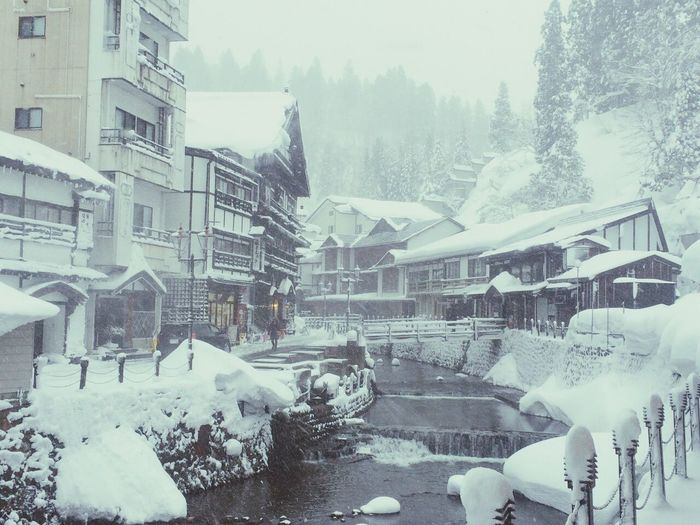 Deepfreeze Walking Around Snow ❄ Freezing Relaxing Taking Photos Blackandwhite Peace And Quiet