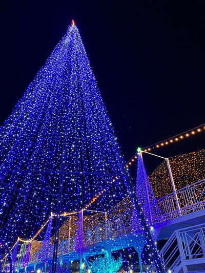 Low angle view of illuminated christmas tree against sky at night