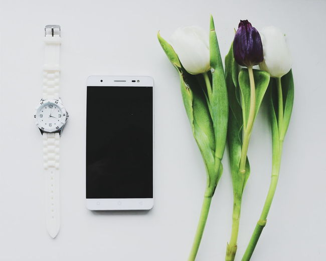 White perfection👌 Clock Hello World Eye4photography  EyeEm Best Shots EyeEm Best Edits EyeEmBestPics EyeEm Gallery Bestoftheday Hanging Out White White Album Tulips Phone Edited Relaxing Flowerporn White Background WhiteCollection Taking Photos Photooftheday Foto Professionalphotography Picturing Individuality Memories Watch Wristwatch