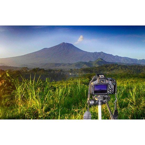 Menikmati pagi bersama gunung slamet di sumbarang jatinegara tegal Infotegal Exploretegal Mountslamet Landscape nature