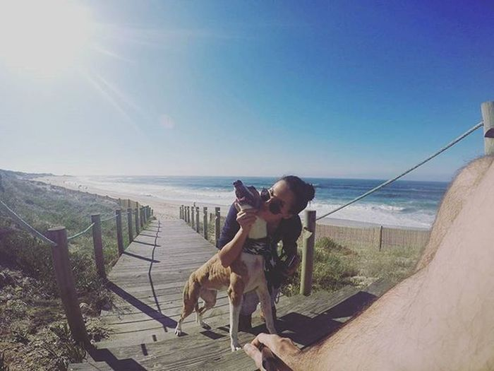Have a Good Week! 😉 Greyhound Greyhoundsofinstagram Greyhounds AdoptaGreyhound Greyhoundrescue Dog Dogs Dogsofinstagram Beach Sea Gopro session by @pedro_jb_rocha