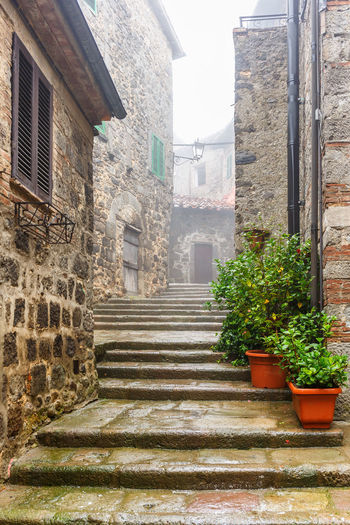 Staircase in a alley with green plants in pots Flower Pot Footpath Misty Path Stairs Wether Abbadia San Salvatore Alley Architecture Building Exterior Empty Flowerpot Fog House Idyllic Italy Mist No People Outdoors Pathway Potted Plant Rainy Stair Staircase Steps