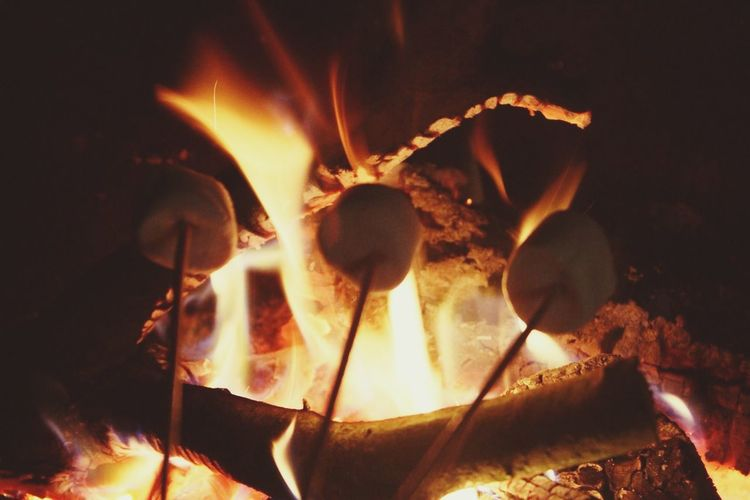 Marshmallows Fire Photography First Eyeem Photo