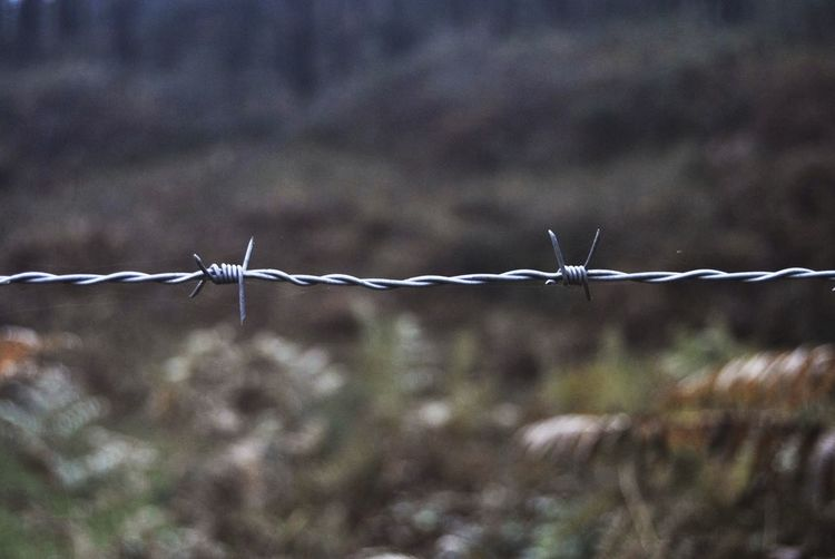 Barbed Wire Barrier Boundary Close-up Fence No People Protection Safety Security Sharp Wire A New Beginning