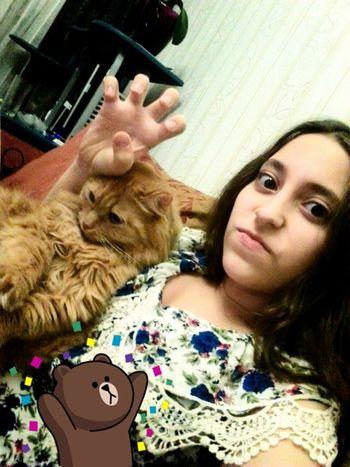 Хихихи)) мойкотик✌ люблю Crazy схожусума Cats