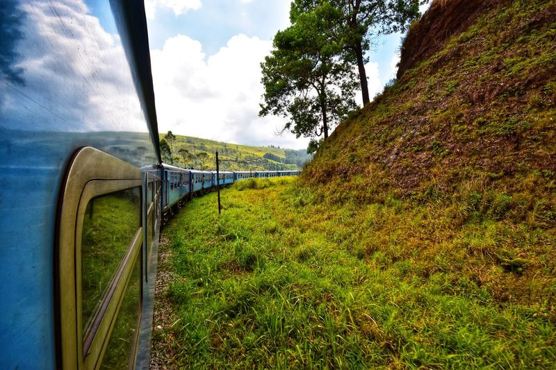 Train Plant Sky Grass Cloud - Sky Nature Day No People Transportation
