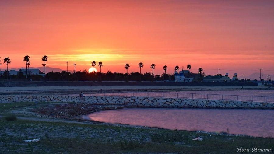 Sunset Water EyeEm Team EyeEmNewHere The Week On EyeEm EyeEm Best Shots Week On Eyeem Landscape 樽井サザンビーチ 泉南市